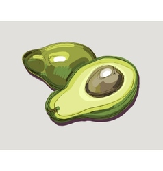 Fresh avocado vector