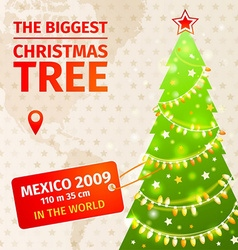 Infographic the biggest christmas tree vector