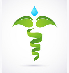 Medical caduceus - alternative medicine green and vector