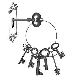 Key in the lock vector