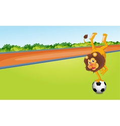 A lion and ball vector