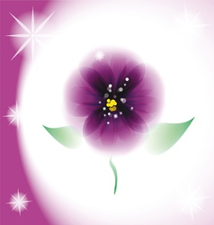 Pansy flower vector
