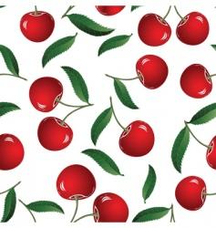 Red cherry vector
