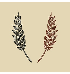 Wheat bakery design vector