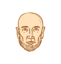 Male bald head bearded etching vector