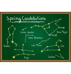 Spring constellations on chalkboard vector