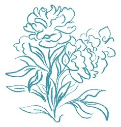 Beautiful peony bouquet vector