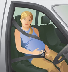 Seat belts vector