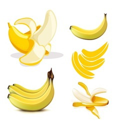 Set of stock misc banana eps vector