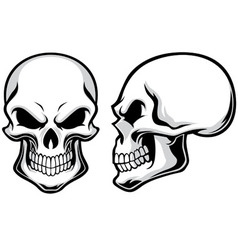 Cartoon skulls vector