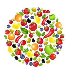 Vegetable circle vector