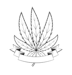 Cannabis green leaf vector