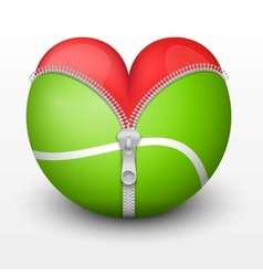 Red heart inside tennis ball vector