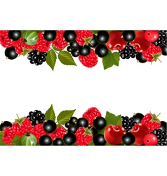 Background with fresh berries and cherries vector