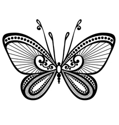 Beautiful butterfly exotic insect vector