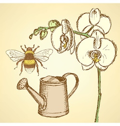 Sketch orchid bee and watering can vector