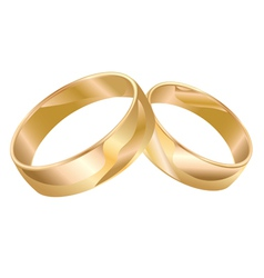 Wedding rings isolated isolated vector