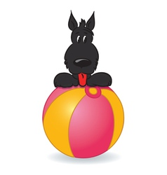 Dog owith ball vector
