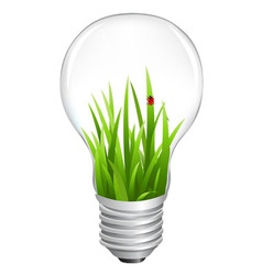 Eco lamp with grass vector