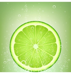 Lemonade lime vector