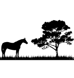 Silhouette of horse and tree vector