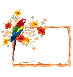 Frame with parrot vector