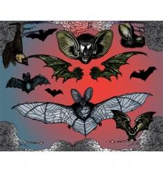Bats wings vector