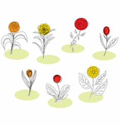 Sketched flowers vector