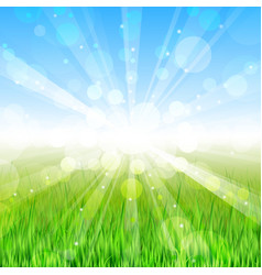 Summer day - background vector