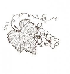 Grape contour in brown colors vector
