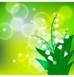 Card with field of lily-of-the-valley flowers vector