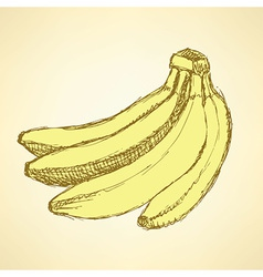 Sketch tasty bananas in vintage style vector