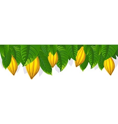 Cocoa pod and leaf - the upper bar- vector