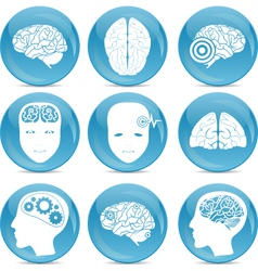 Human brain icons vector