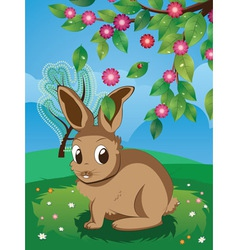 Brown rabbit on lawn vector