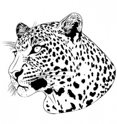 Leopard tattoo vector
