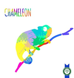 Abstract colorful chameleon silhouette vector
