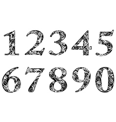 Digits and numbers with floral elements vector