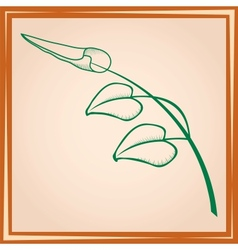 Three leaves on branch in frame vector