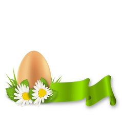 Traditional easter egg with flowers daisy grass vector
