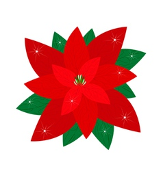 Red christmas poinsettia flower vector