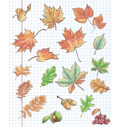 Et of autumn leaves chestnuts acorns and viburnum vector