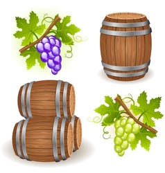 Wooden barrels and grape vector