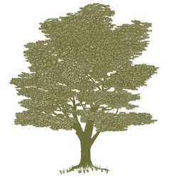 Woodcut solitary tree vector