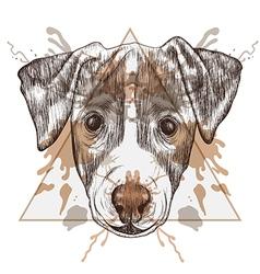 Sketch hipster jack russel terrier face in vector