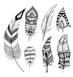 Set of decorative feathers vector