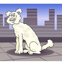 Poodle dog in the city cartoon vector