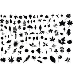 100 leaves vector
