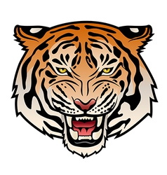 Tribal tiger color vs vector