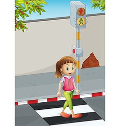A young lady at the pedestrian lane vector